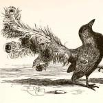 """Was Actor Edward Alleyn the Real """"Upstart Crow""""?"""